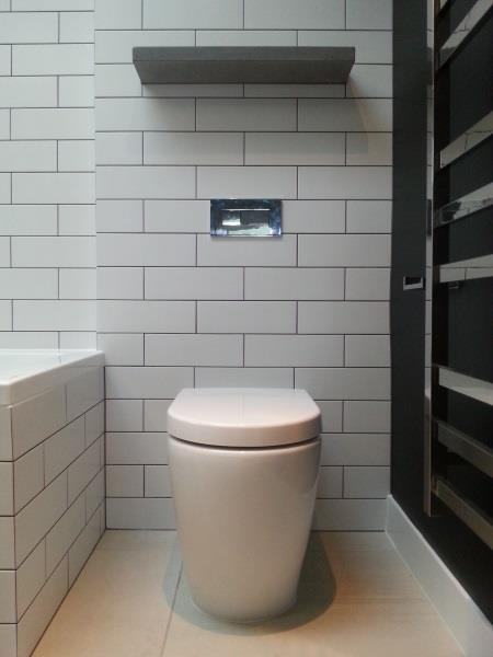 Concealed Cistern Toilet